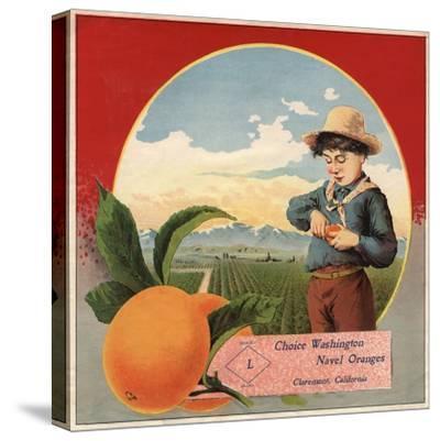 Boy in Orchard - Claremont, California - Citrus Crate Label