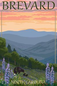 Brevard, North Carolina - Spring Flowers and Bear Family by Lantern Press
