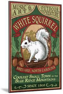 Brevard, North Carolina - White Squirrel by Lantern Press