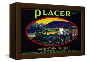 California, Placer Mountain Fruits Brand Appel Label by Lantern Press