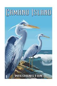 Camano Island, Washington - Blue Heron by Lantern Press