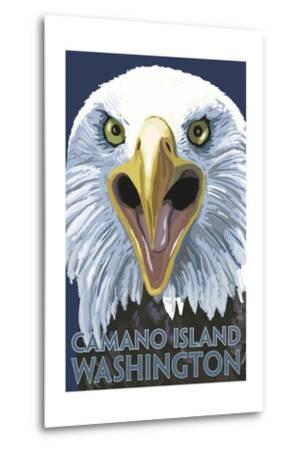 Camano Island, Washington - Eagle Up Close
