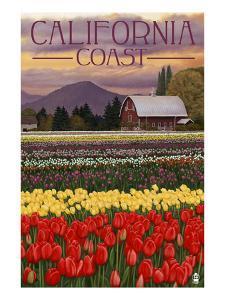 Cambria, California - Tulip Farm by Lantern Press