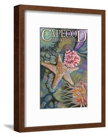 Cape Cod, Massachusetts - Tidepool