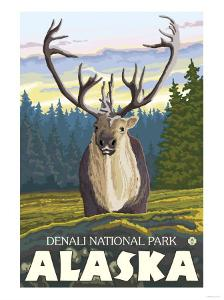 Caribou in the Wild, Denali National Park, Alaska by Lantern Press