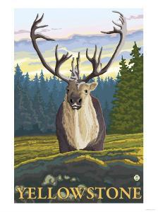 Caribou in the Wild, Yellowstone National Park by Lantern Press