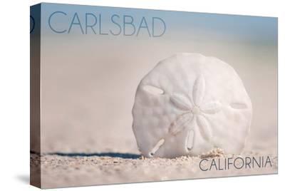 Carlsbad, California - Sand Dollar on Beach