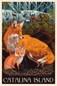 Catalina Island, California - Fox and Kit by Lantern Press