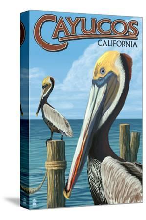 Cayucos, California - Pelicans