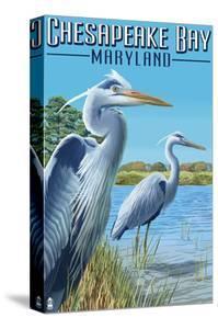 Chesapeake Bay, Maryland - Blue Heron by Lantern Press