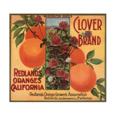 Clover Brand - Redlands, California - Citrus Crate Label by Lantern Press