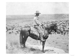 Cowboy on Horseback Watches His Herd Photograph - Texas by Lantern Press