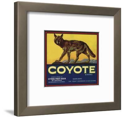 Coyote Brand - Upland, California - Citrus Crate Label