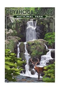 Cuyahoga Valley National Park, Ohio - Deer and Falls by Lantern Press