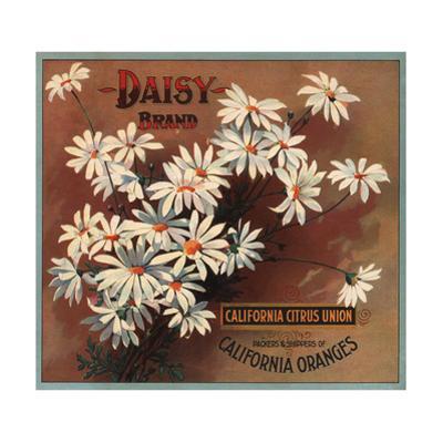 Daisy Brand - California - Citrus Crate Label