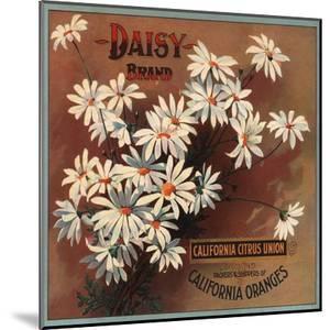 Daisy Brand - California - Citrus Crate Label by Lantern Press