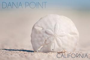 Dana Point, California - Sand Dollar and Beach by Lantern Press