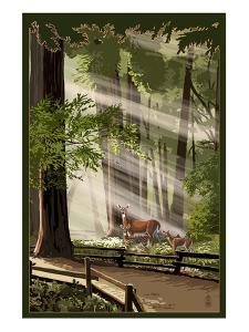 Deer and Fawns in Forest by Lantern Press