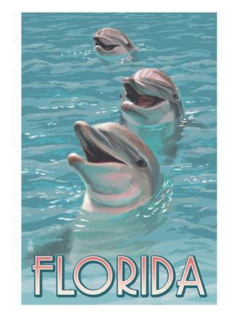 Dolphin Trio - Florida