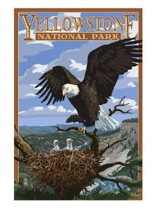 Eagle Perched - Yellowstone National Park by Lantern Press