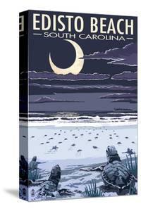 Edisto Beach, South Carolina - Sea Turtles Hatching by Lantern Press