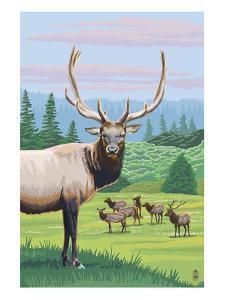 Elk Herd by Lantern Press