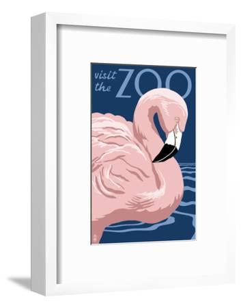 Flamingo - Visit the Zoo