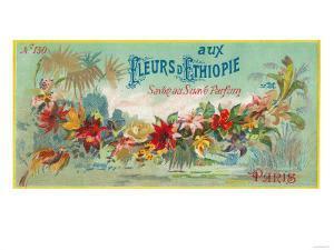 Fleurs D Ethiopie Soap Label - Paris, France by Lantern Press