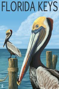 Florida Keys, Florida - Brown Pelican by Lantern Press