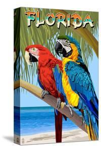 Florida - Parrots by Lantern Press
