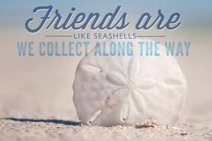 Friends are Like Seashells - Sand Dollar by Lantern Press