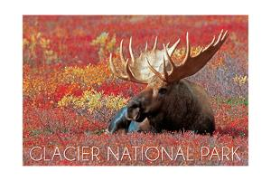 Glacier National Park - Bull Moose and Red Flowers by Lantern Press