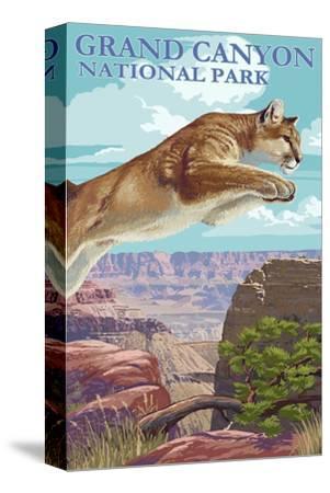 Grand Canyon National Park - Cougar Jumping