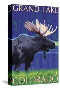 Grand Lake, Colorado - Moose at Night by Lantern Press