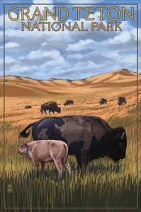 Grand Teton National Park - Buffalo and Calf by Lantern Press