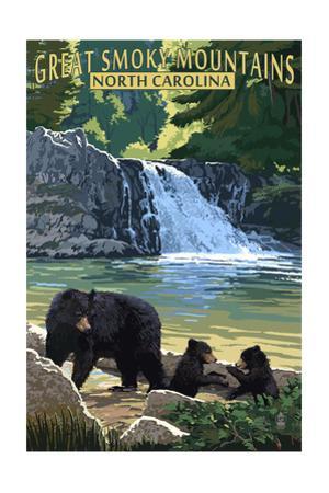 Great Smoky Mountains, North Carolina - Falls