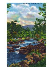 Great Smoky Mts. Nat'l Park, Tn - View of Little River Near Gatlinburg, c.1946 by Lantern Press
