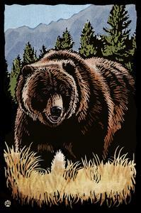 Grizzly Bear - Scratchboard by Lantern Press
