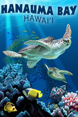 Hanauma Bay, Hawai'i - Sea Turtles Swimming