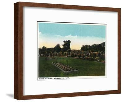Hartford, Connecticut - Elizabeth Park Rose Garden