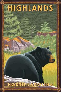 Highlands, North Carolina - Black Bear in Forest by Lantern Press