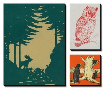 In the Woods by Lantern Press