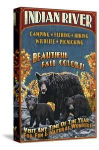 Indian River, Michigan - Bear Family by Lantern Press