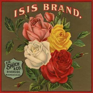 Isis Brand - Riverside, California - Citrus Crate Label by Lantern Press