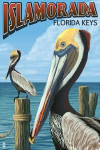 Islamorada, Florida Keys - Pelicans by Lantern Press
