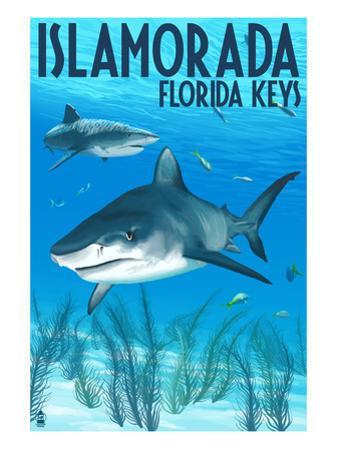 Islamorada, Florida Keys - Tiger Shark