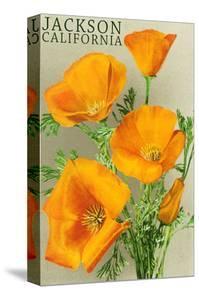 Jackson, California - The Californian Poppy Flowers by Lantern Press