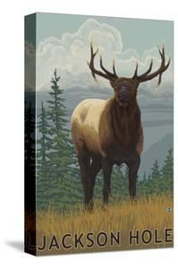 Jackson Hole, Wyoming - Elk by Lantern Press