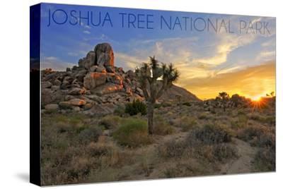 Joshua Tree National Park, California - Sunrise