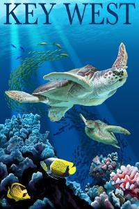 Key West, Florida - Sea Turtles by Lantern Press